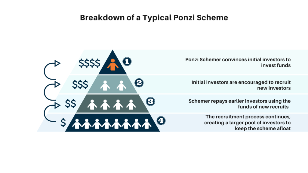 This diagram explains how a common Ponzi scheme operates, starting from the fraudster and down to the growing pool of investors