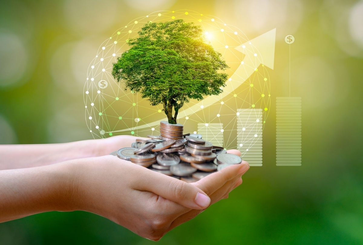 What You Should Know About Socially Responsible Investing